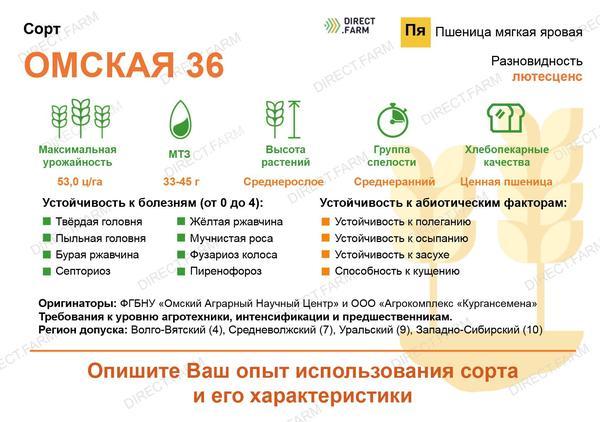 Омская 36
