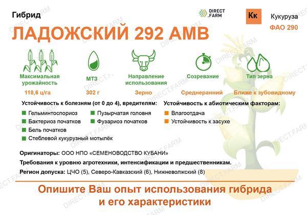 Ладожский 292 АМВ