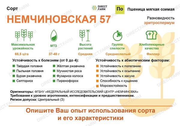 Немчиновская 57