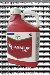 Ламадор Про, КС