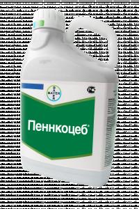 Пеннкоцеб, СП