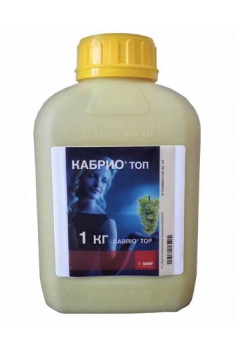 Кабрио Топ, ВДГ