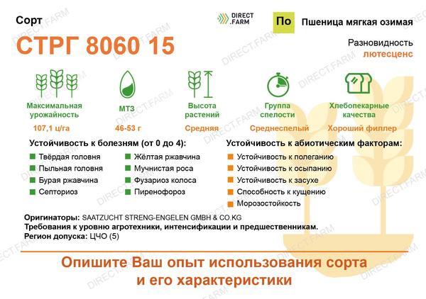 СТРГ 8060 15
