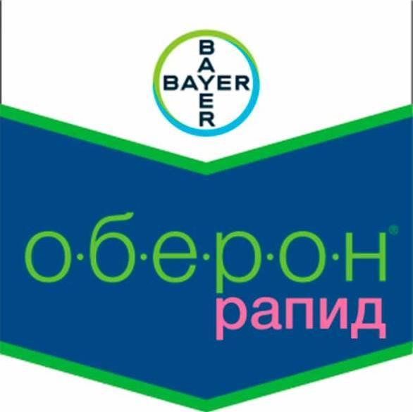 Оберон Рапид, КС