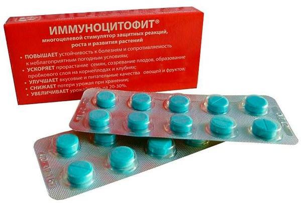 Иммуноцитофит, ТАБ