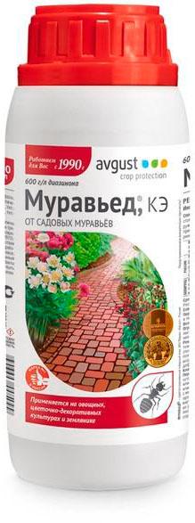 Муравьед, КЭ