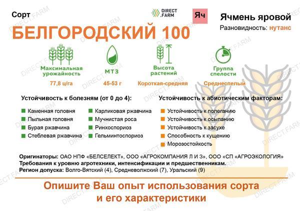 Белгородский 100
