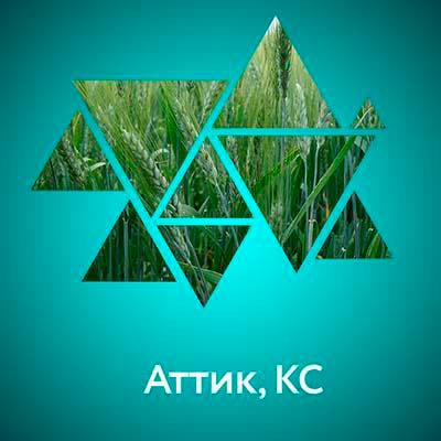 (И) Аттик, КС