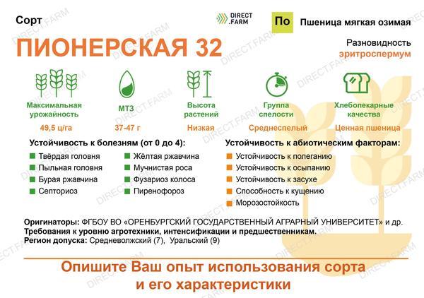 Пионерская 32
