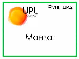 Манзат, ВДГ