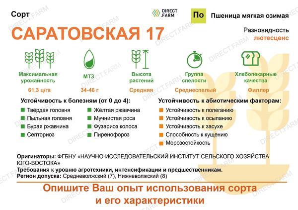Саратовская 17