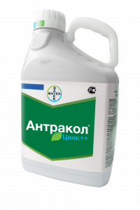 Антракол, ВДГ