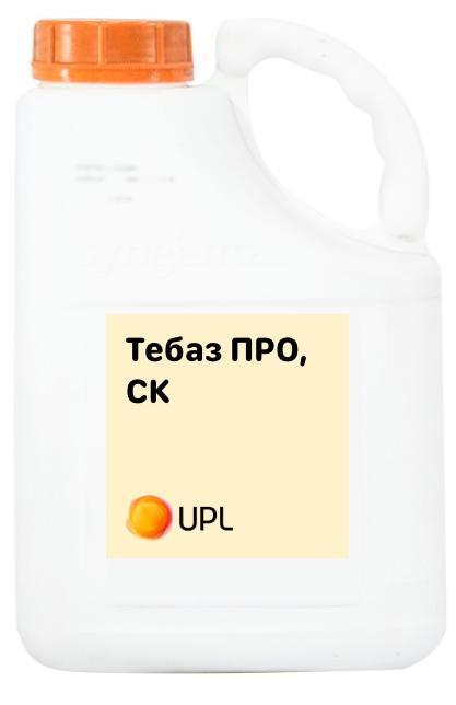 Тебаз Про, СК