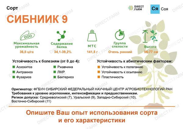 Сибниик 9